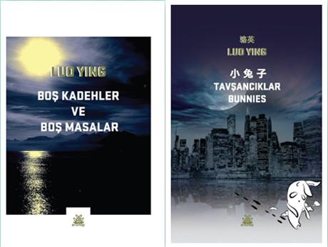 骆英诗集《小兔子》土耳其语版等在伊斯坦布尔首发