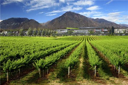 中坤落樱葡萄酒庄园在京竞得首个旅游地块