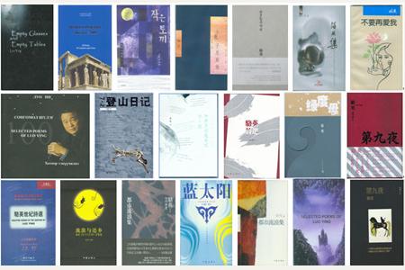 骆英诗集入选第六届鲁迅文学奖参评目录