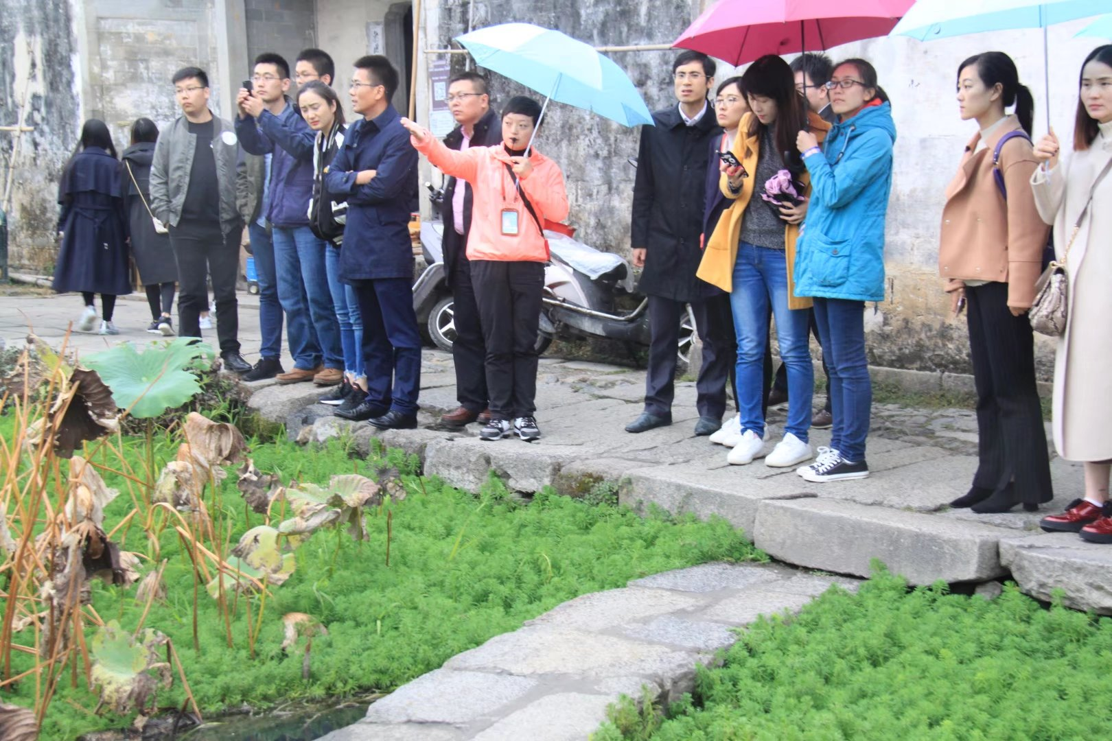 宏村讲解员受到游客高度表扬